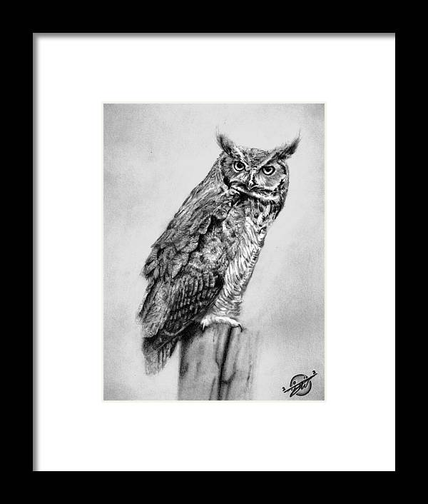 Drawing Framed Print featuring the drawing Bill's Great Horned Owl by Brian Wylie