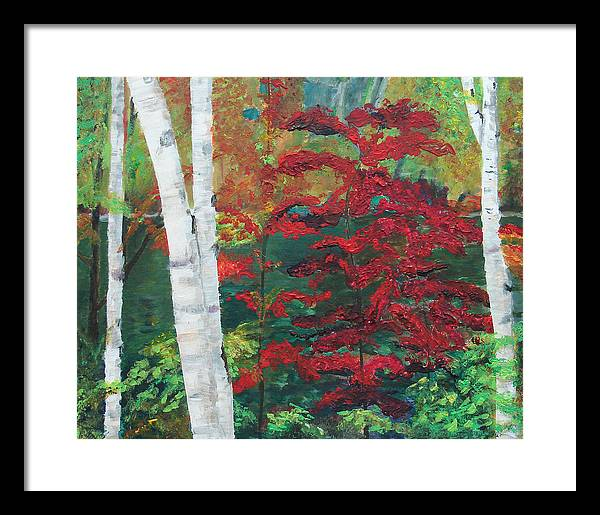 Forest Framed Print featuring the painting Birch Trees In Red by Frankie Picasso