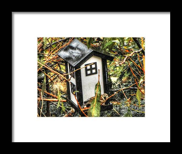 Bird House Framed Print featuring the pyrography Bird House by Yury Bashkin