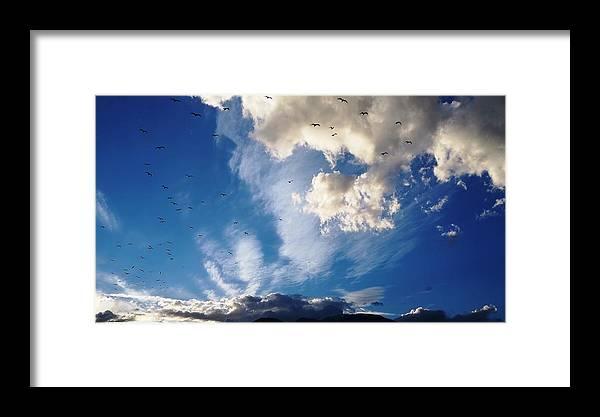 Birds Flight Framed Print featuring the photograph Birds Of Flight by Andonis Katanos