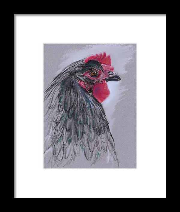 Hen Framed Print featuring the pastel Black Australorp Hen by MM Anderson
