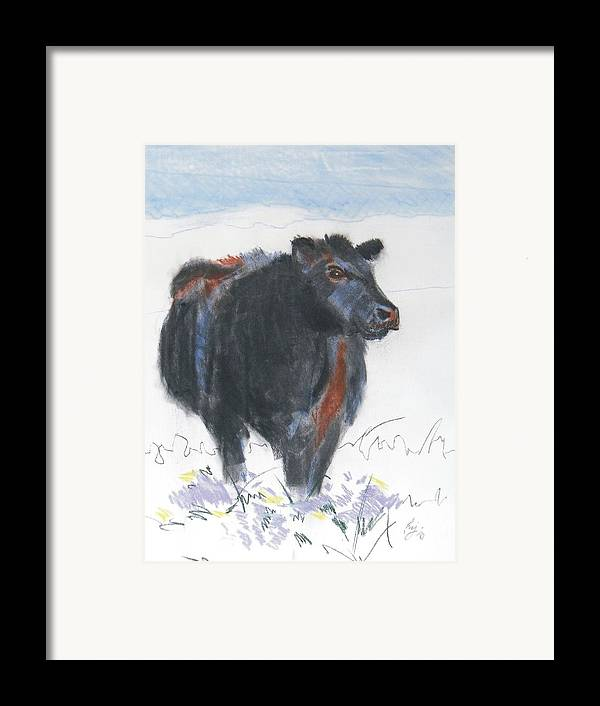 Mike Jory Cow Framed Print featuring the painting Black Cow Drawing by Mike Jory