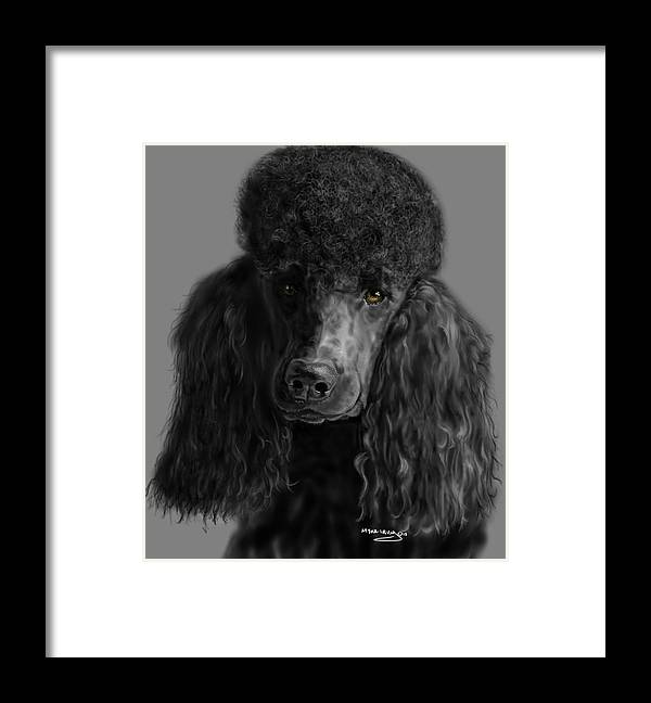 Akc Framed Print featuring the digital art Black Poodle by Myke Irving
