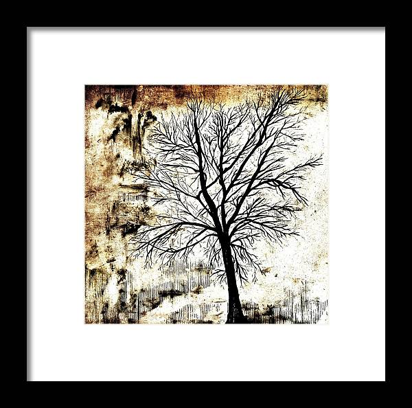 Black White And Sepia Tones Silhouette Tree Painting Framed Print By
