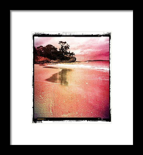 Beaches Framed Print featuring the painting Blackman's Bay by Roz McQuillan