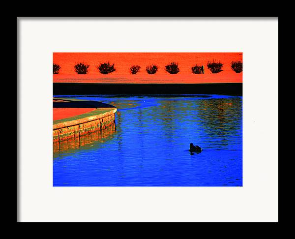 Abstract Framed Print featuring the photograph Blaze Of Glory by Lenore Senior