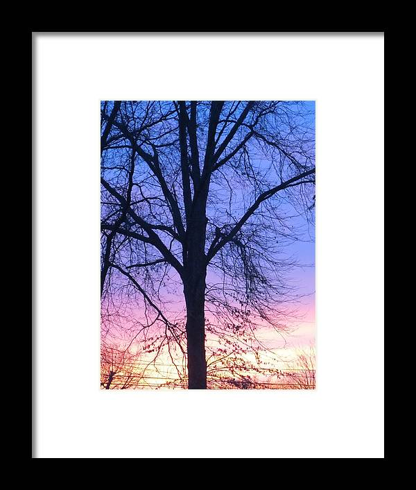 Sky Framed Print featuring the photograph Blazing Sky by Michelle Smeltzer