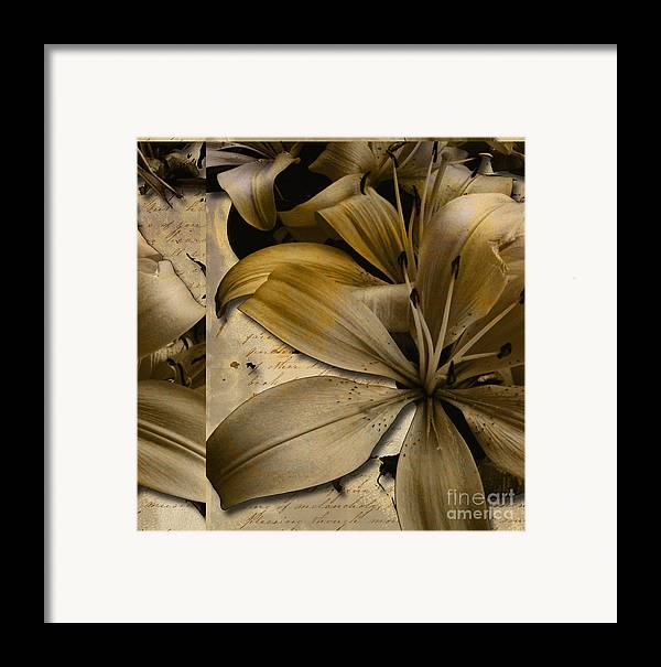Framed Print featuring the mixed media Bliss IIi by Yanni Theodorou