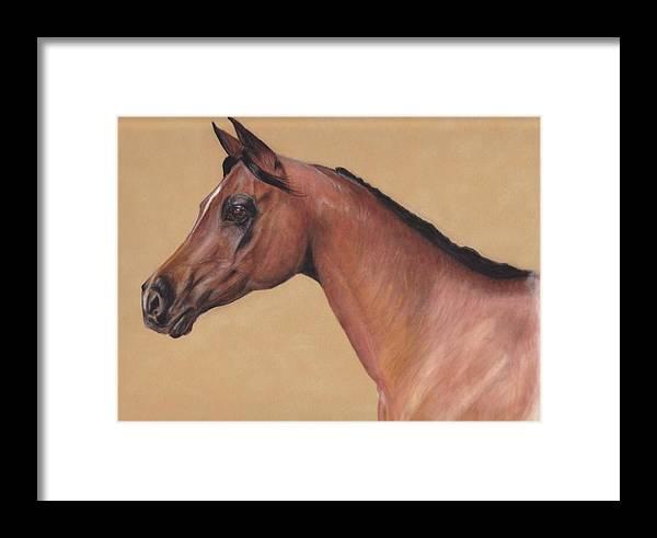 Arabian Framed Print featuring the pastel Blood Arabian Queen by Loreen Pantaleone