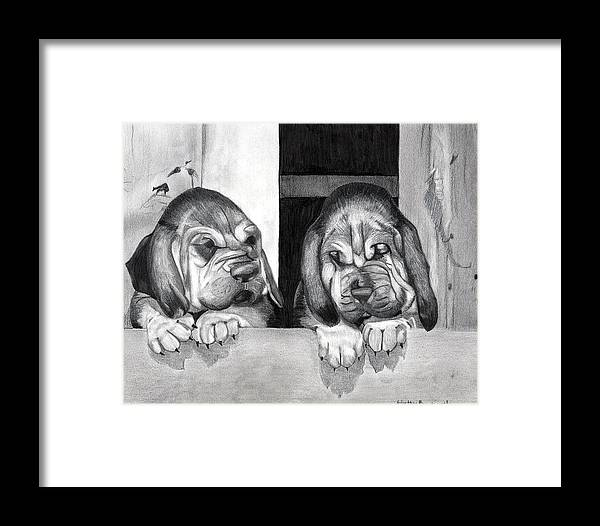 Bloodhound Puppies Dog Portrait Framed Print featuring the drawing Bloodhound Puppies Dog Portrait by Olde Time Mercantile