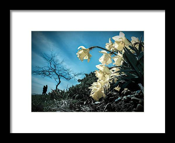 Flowers Framed Print featuring the photograph Blooming by Jared Maneggio