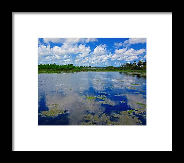 Water Framed Print featuring the photograph Blue And Green Cay by MTBobbins Photography