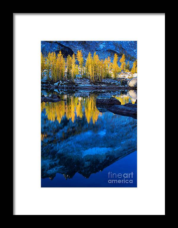Alpine Lakes Wilderness Framed Print featuring the photograph Blue And Yellow by Inge Johnsson