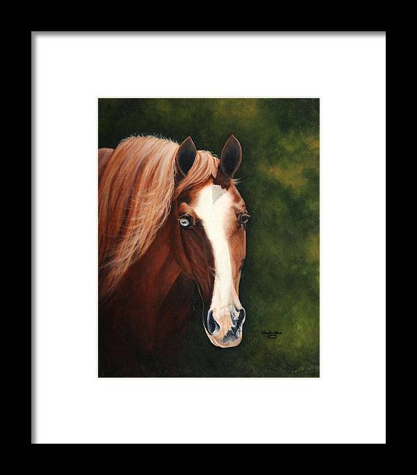 Equine Art Paintings Framed Print featuring the painting Blue Eyed Bum by Debra Sue Waters