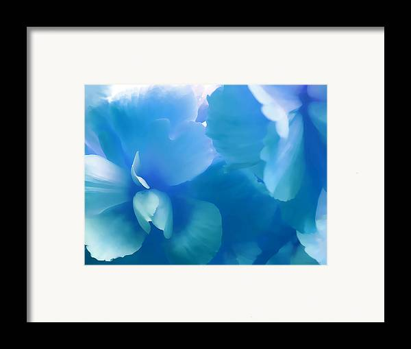 Begonia Framed Print featuring the photograph Blue Melody Begonia Floral by Jennie Marie Schell
