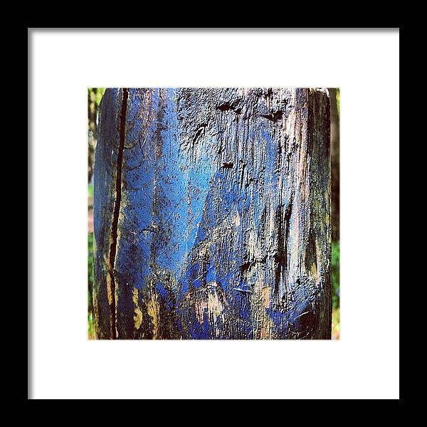 Iccloseups Framed Print featuring the photograph Blue Painted Wood #iccloseups #painted by Nic Squirrell