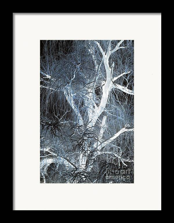 Snow Framed Print featuring the photograph Blue Snow by Kathleen Struckle