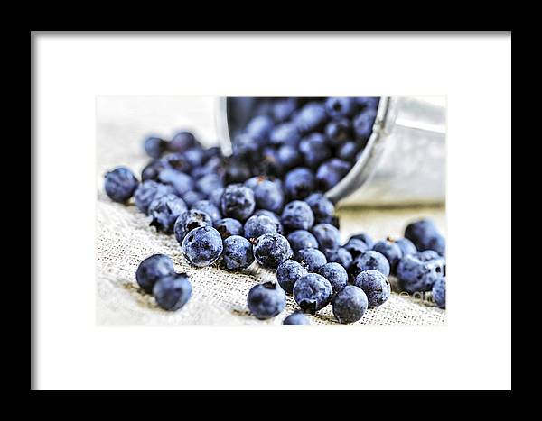 Blueberry Framed Print featuring the photograph Blueberries by Elena Elisseeva