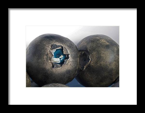 Blueberries Framed Print featuring the photograph blueberries V by Bill Owen
