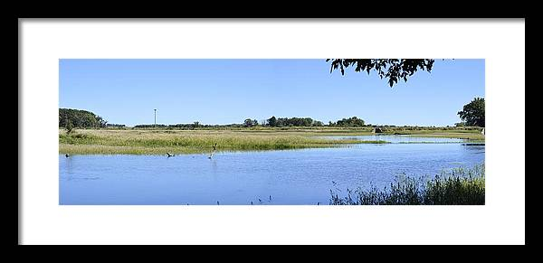 Blue Framed Print featuring the photograph Bluer Than Blue by Bonfire Photography