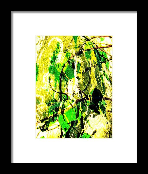 Bo Tree Framed Print featuring the photograph Bo Leaves by Asith Wisidagama