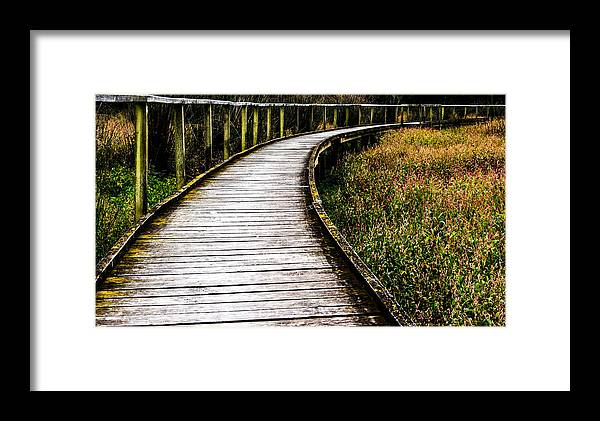 Boardwalk Framed Print featuring the photograph Boardwalk 03 by Heather Provan