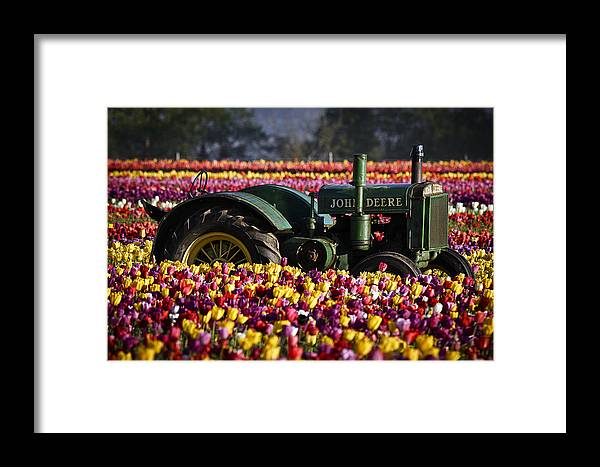 Bogged Down By Color Framed Print featuring the photograph Bogged Down By Color by Wes and Dotty Weber
