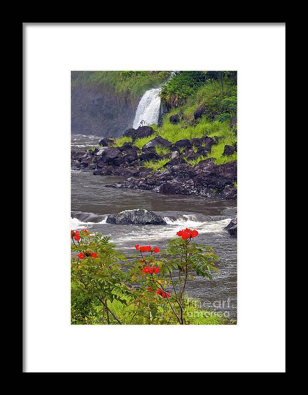Boiling Pots State Park Big Island Hawaii Parks Wailuka River Rivers Water Falls Waterfall Waterfalls Tree Trees Plants Plants Flower Flowers Landscape Landscapes Waterscape Waterscapes Framed Print featuring the photograph Boiling Pots State Park by Bob Phillips