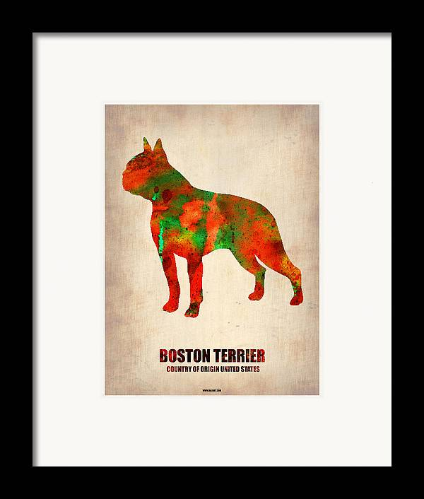 Boston Terrier Framed Print featuring the painting Boston Terrier Poster by Naxart Studio