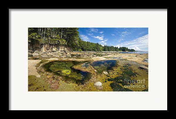 Botanical Beach Framed Print featuring the photograph Botanical Beach by Matt Tilghman