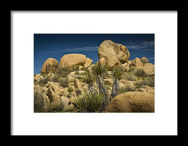 Art Framed Print featuring the photograph Boulders In The Joshua Tree National Park by Randall Nyhof