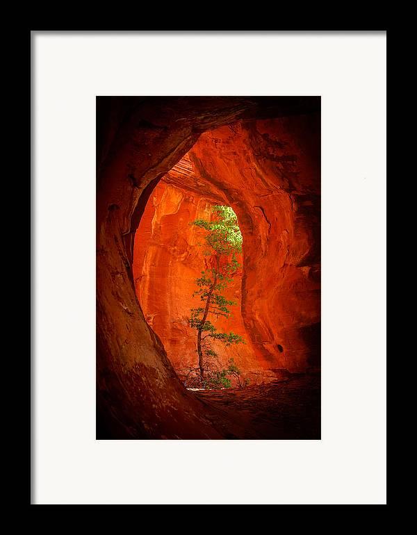 Sedona Framed Print featuring the photograph Boynton Canyon 04-343 by Scott McAllister