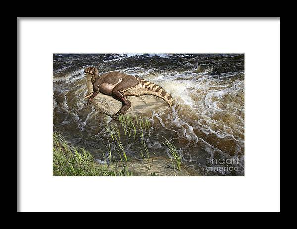 Dinosaur Digital Art Framed Print featuring the digital art Brachylophosaurus canadensis corpse by Julius Csotonyi