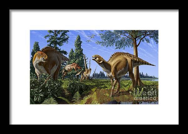 Dinosaur Framed Print featuring the digital art Brachylophosaurus canadensis by Julius Csotonyi