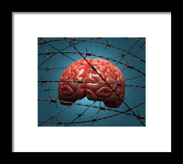 Artwork Framed Print featuring the photograph Brain And Barbed Wire by Ktsdesign