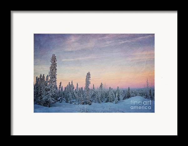 Boreal. Subarctic Framed Print featuring the photograph Break Of Dawn by Priska Wettstein