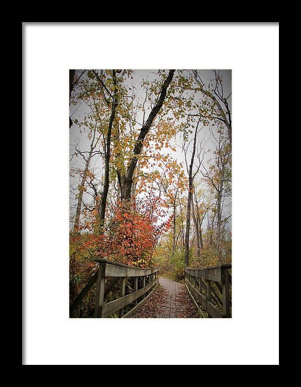 Bridge Framed Print featuring the photograph Bridge In The Woods by Kara Keeler
