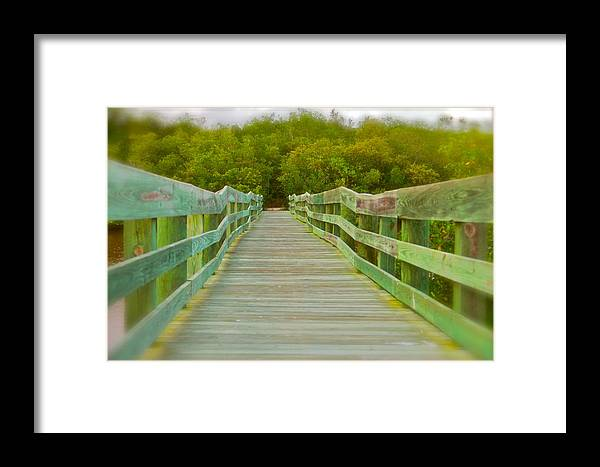 Framed Print featuring the photograph Bridge by Justin Hoogeveen