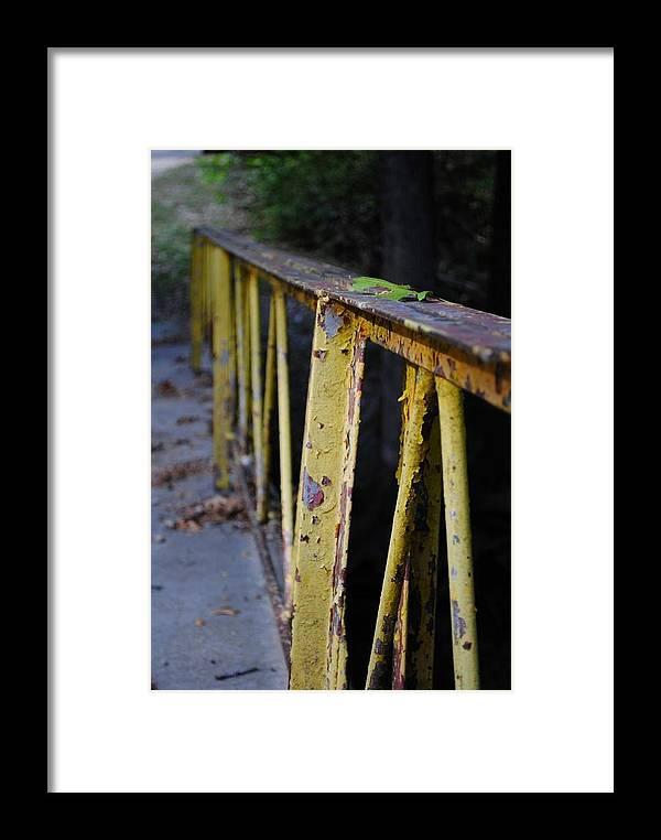 Framed Print featuring the photograph Bridge by Rachel Bazarow