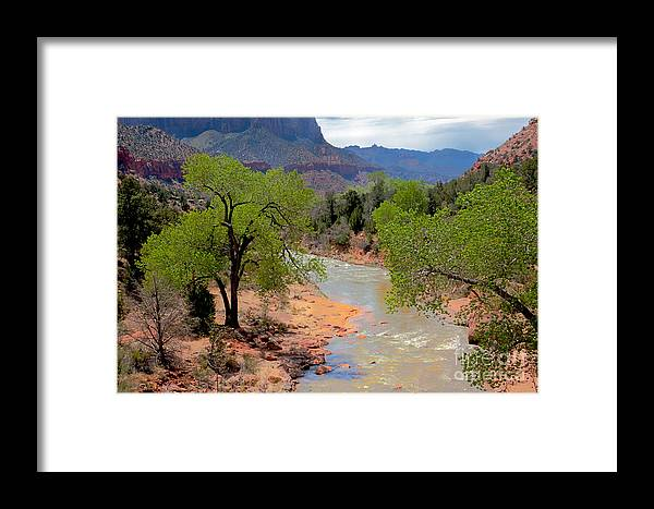 Zion National Parks Framed Print featuring the photograph Bridge View Of The Virgin River by Robert Bales