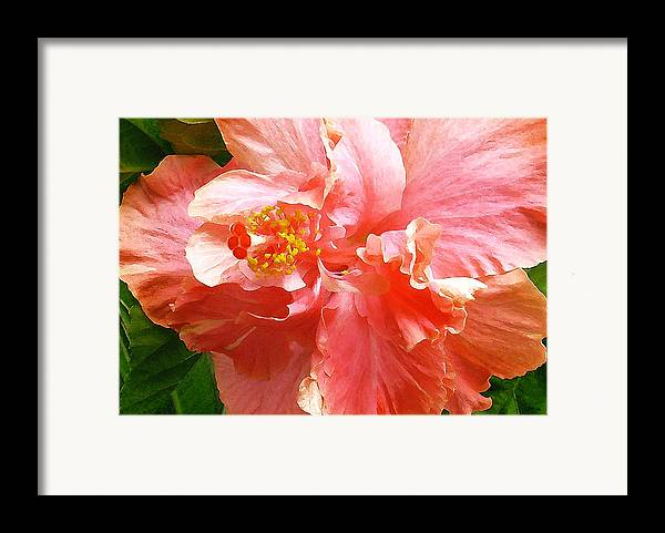 Hibiscus Framed Print featuring the digital art Bright Pink Hibiscus by James Temple