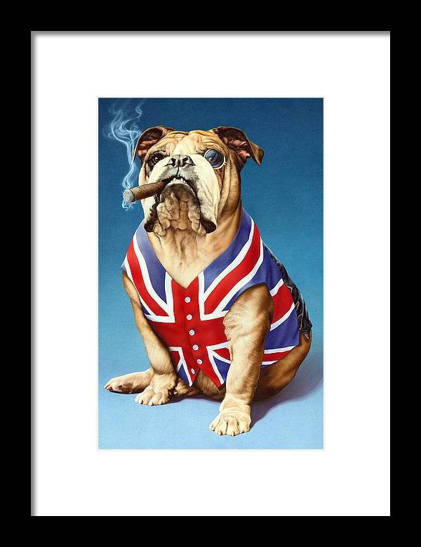 British Framed Print featuring the photograph British Bulldog by MGL Meiklejohn Graphics Licensing