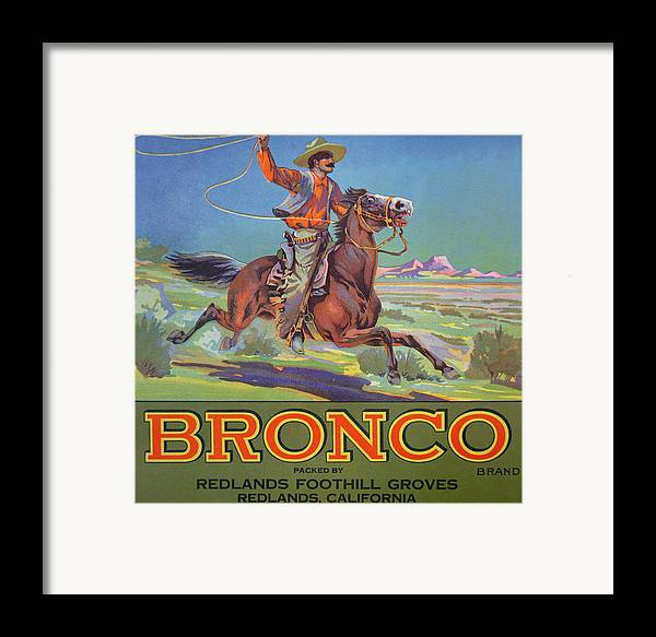Advert Framed Print featuring the painting Bronco Oranges by American School