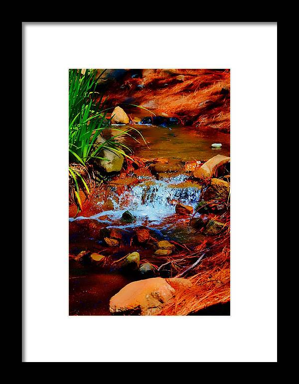 Stream Framed Print featuring the photograph Brook Nook by Sharon Lavoie
