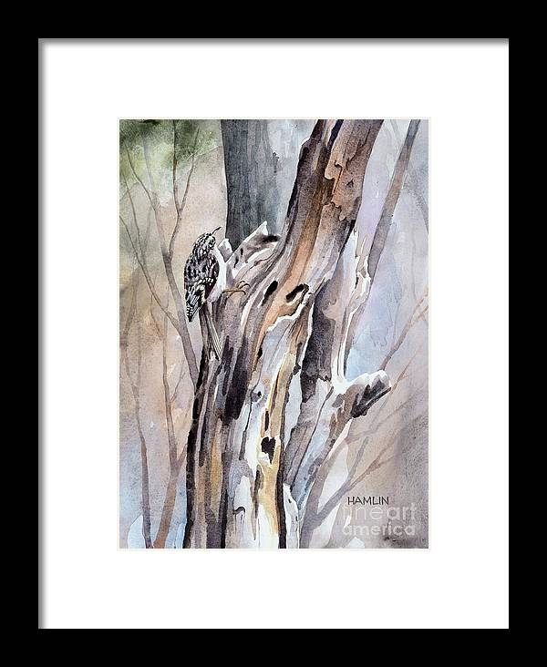 Bird Framed Print featuring the painting Brown Creeper by Steve Hamlin