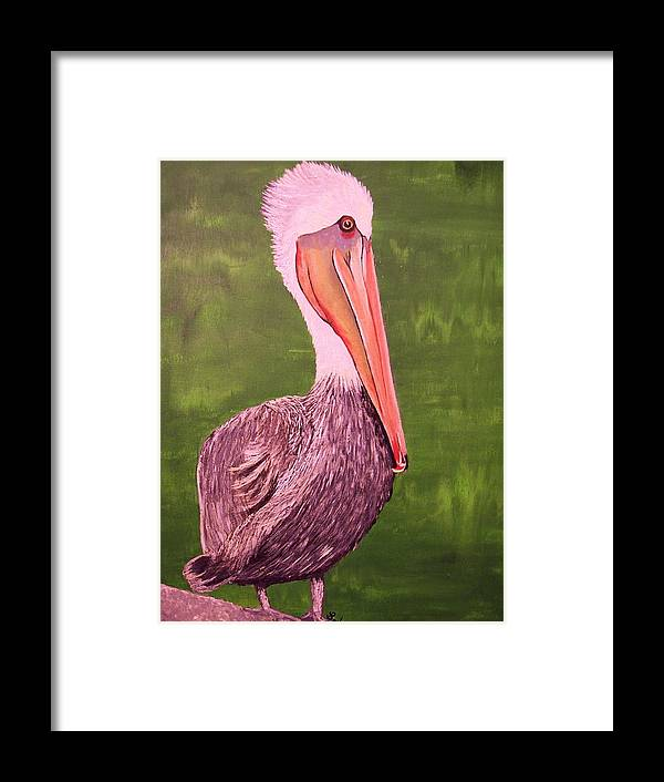 Seabirds Framed Print featuring the painting Brown Pelican I by Barbara Samples