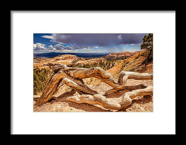 Bryce Canyon National Park Framed Print featuring the photograph Bryce Canyon by Ken Cromer