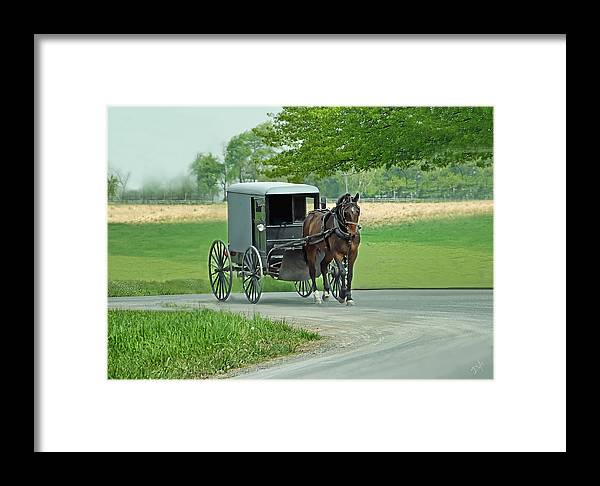Amish Framed Print featuring the photograph Buggy Ride by Dyle  Warren