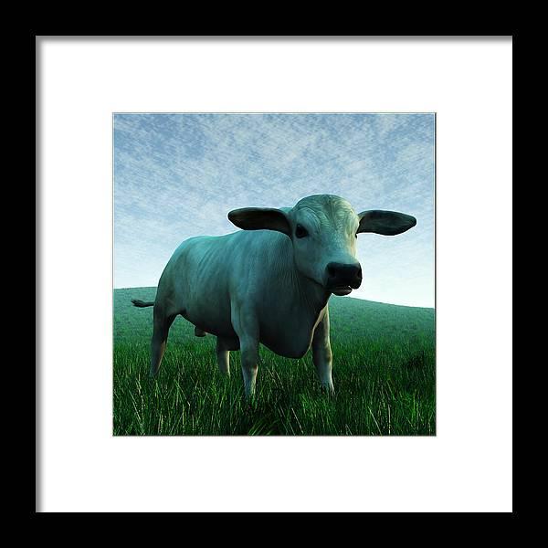Brahman Framed Print featuring the digital art Bull... by Tim Fillingim
