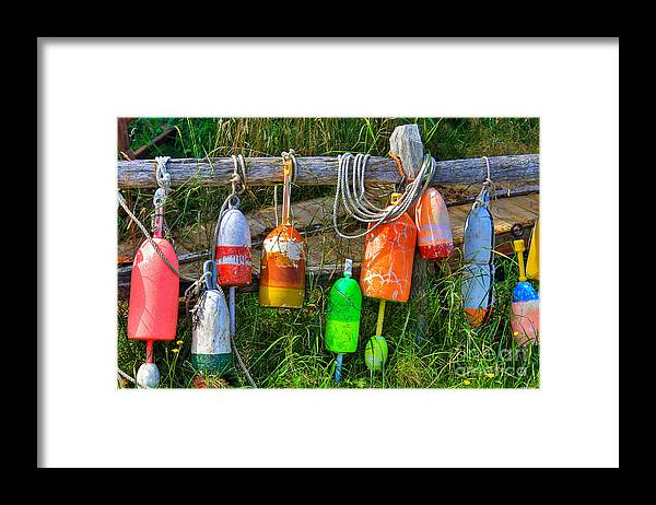 Buoy Framed Print featuring the photograph Buoy's Rest by Brenda Giasson